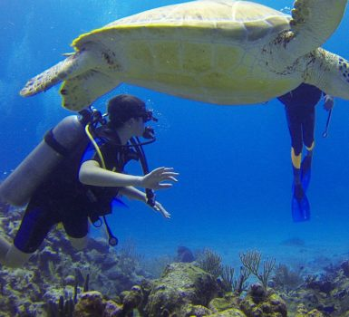 places to scuba dive in Mexico