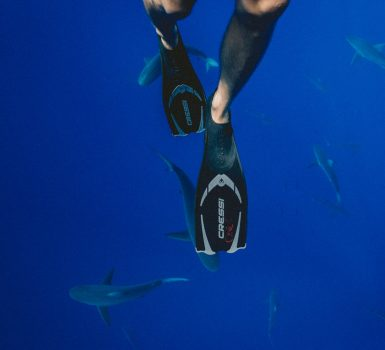 best fins for strong currents
